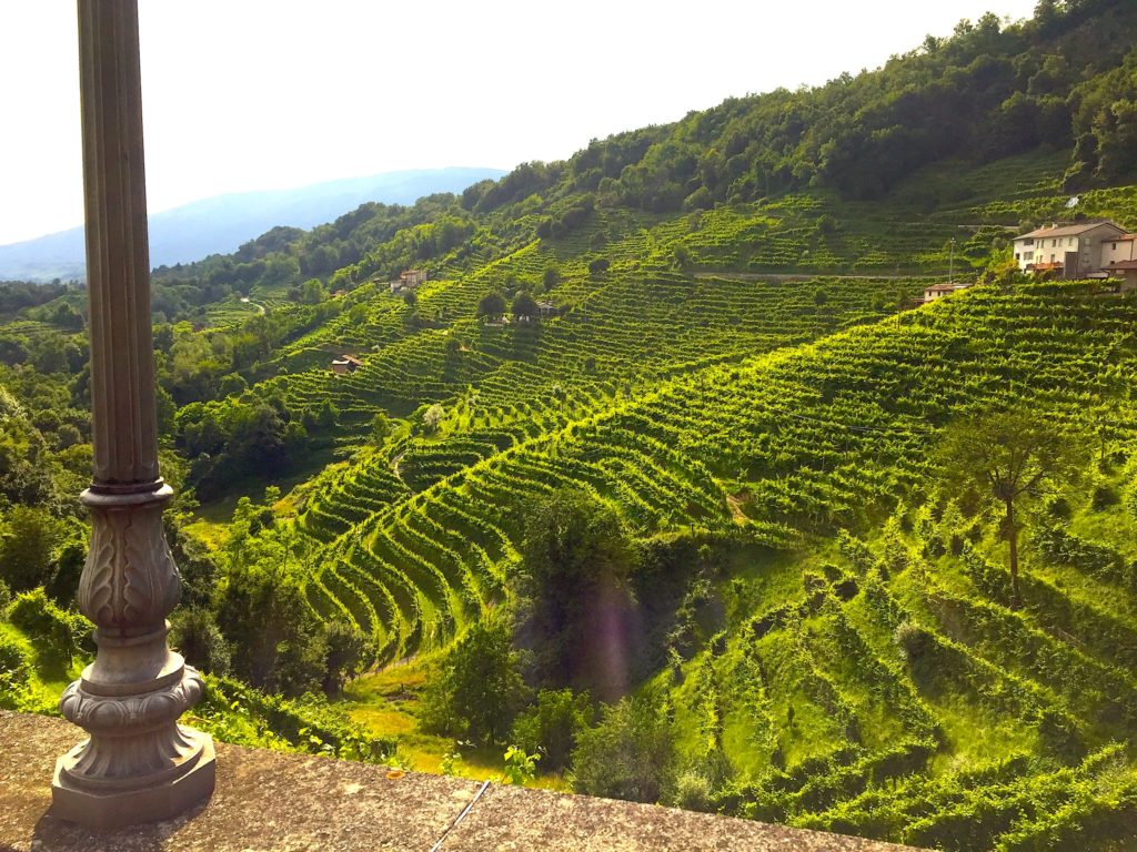 Prosecco-Hügel von Coneglanio-Valdobbiadene